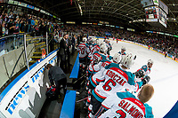 KELOWNA, CANADA - APRIL 14: The Kelowna Rockets celebrate a third period goal against the Portland Winterhawks on April 14, 2017 at Prospera Place in Kelowna, British Columbia, Canada.  (Photo by Marissa Baecker/Shoot the Breeze)  *** Local Caption ***