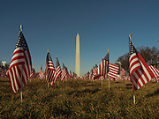 """Early morning sunlight lit a field of United States flags that were part of the """"Field of Flags"""" on the National Mall. Nearly 200,000 flags was planted on the Mall to fill in for the thousands of people who could not attend because of the coronavirus pandemic and tight security. They represented the 50 states, the District of Columbia, and the five U.S. territories of American Samoa, Guam, Northern Mariana Islands, Puerto Rico and the U.S. Virgin Islands."""