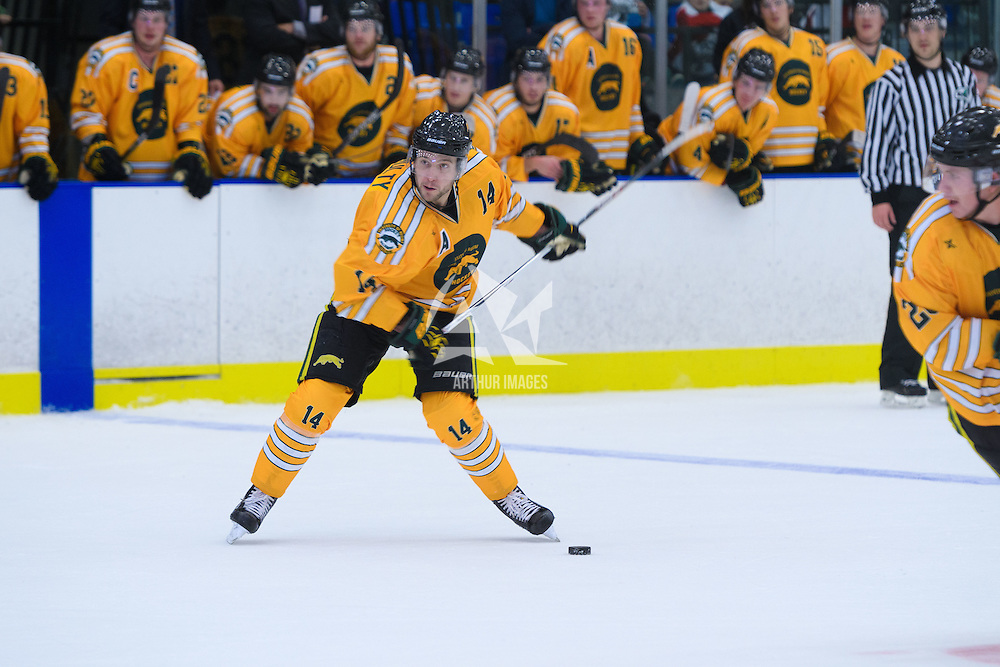 4th year forward Ian McNulty (14) of the Regina Cougars during the Shine On game on October 28 at The Co-Operators Arena. Credit: /Arthur Images