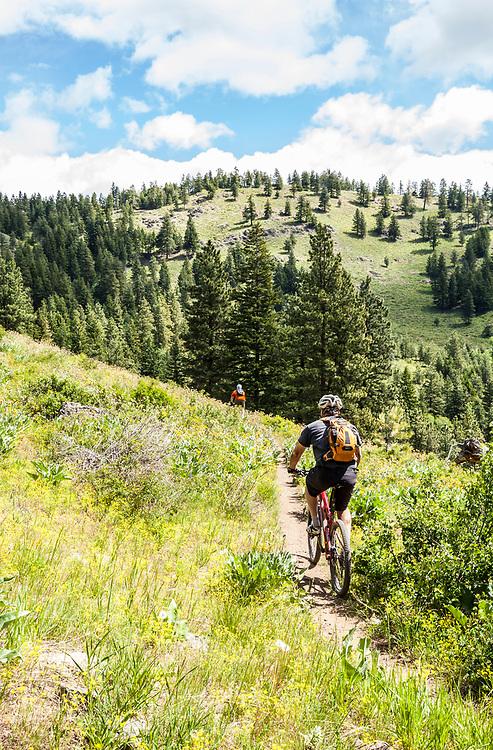 Two middle aged men out riding mountain bikes on Buck Mountain outside of Winthrop, Washington, USA.