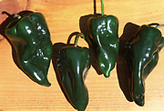 Close up selective focus photograph of four Ancho Poblano chile peppers