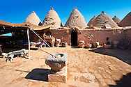 """Pictures of the beehive adobe buildings of Harran, south west Anatolia, Turkey.  Harran was a major ancient city in Upper Mesopotamia whose site is near the modern village of Altınbaşak, Turkey, 24 miles (44 kilometers) southeast of Şanlıurfa. The location is in a district of Şanlıurfa Province that is also named """"Harran"""". Harran is famous for its traditional 'beehive' adobe houses, constructed entirely without wood. The design of these makes them cool inside. 23 .<br /> <br /> If you prefer to buy from our ALAMY PHOTO LIBRARY  Collection visit : https://www.alamy.com/portfolio/paul-williams-funkystock/harran.html<br /> <br /> Visit our TURKEY PHOTO COLLECTIONS for more photos to download or buy as wall art prints https://funkystock.photoshelter.com/gallery-collection/3f-Pictures-of-Turkey-Turkey-Photos-Images-Fotos/C0000U.hJWkZxAbg ."""