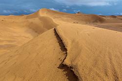 Sand dunes, Erg Chebbi, Saharan Desert, Morocco