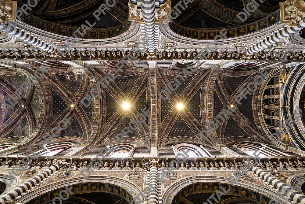 Ceiling detail of the main nave of Siena Dome (Duomo) with stars and sculptures during the day