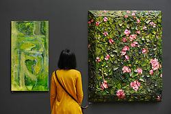 "© Licensed to London News Pictures. 08/06/2017. London, UK. A visitor views (L to R) ""Untitled"" by Varda Caivano (GBP19,000) and ""Rose Painting (Near Van Gogh's Grave) XVIII"" by Julian Schnabel Hon RA.  Preview of the Summer Exhibition 2017 at the Royal Academy of Arts in Piccadilly.  Co-ordinated by Royal Academician Eileen Cooper, the 249th Summer Exhibition is the world's largest open submission exhibition with around 1,100 works on display by high profile and up and coming artists.<br />  Photo credit : Stephen Chung/LNP"