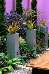 Galvanised steel planters with Imperata cylindrica. Inset lights, pink painted wall. 'Catwalk' garden, Chelsea 2003
