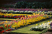 Kensington Palace sunken gardens in full summer bloom. London, England.