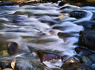 The Silky Motion Blur Of Water Over Rocks In This Slow Exposure Creates A Paint Brush Effect, Great Smoky Mountains National Park, Tennessee, USA