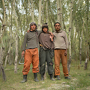 Men working on cutting hay in a forest. The traditional life of the Wakhi people, in the Wakhan corridor, amongst the Pamir mountains.