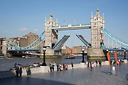 Tower Bridge viewed from More London on the south side of the River Thames, opening to let a traditional Thames Barge boat under it's raised road spans.