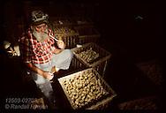 Albert Deadon smoking corn cob 'grandpa' pipe, during break @ MO Meerschaum factory, Washington. Missouri