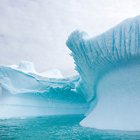 A beautifully sculpted iceberg in Port Charcot near Booth Island, Antarctica.