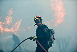 August 14, 2017 - Kalamos, Greece - Flames rise during a forest fire at Kalamos village, north of Athens. A total of 53 wildfires broke out in Greece Saturday and Sunday, including at the beach resort of Kalamos near Athens. (Credit Image: © Eurokinissi via ZUMA Wire)