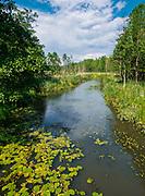 Rzeka Marycha na pograniczu polsko-litewskim we wsi Aleksiejówka, Polska<br /> River Marycha on the Polish-Lithuanian border in the village of Aleksiejówka, Poland