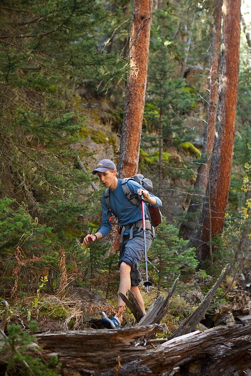 David Coffey carefully balances across logs in Big Thompson River, Rocky Mountain National Park, Colorado.