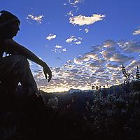 Cordillera Vilcabamba, Cuzco District, Peru. A trekker beside lupine flowers enjoys dawn atop Cerro Victoria.