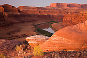 The Colorado River from along the Potash Road, Island in the Sky District, Canyonlands National Park, near Moab, Utah.