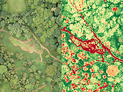 Aerial photography using conventional orthomosaic and Normalised Difference Vegetation Index imaging techniques. Surrey, UK.
