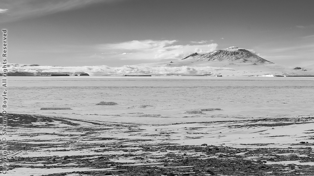 Icebergs on McMurdo Sound from Marble Point
