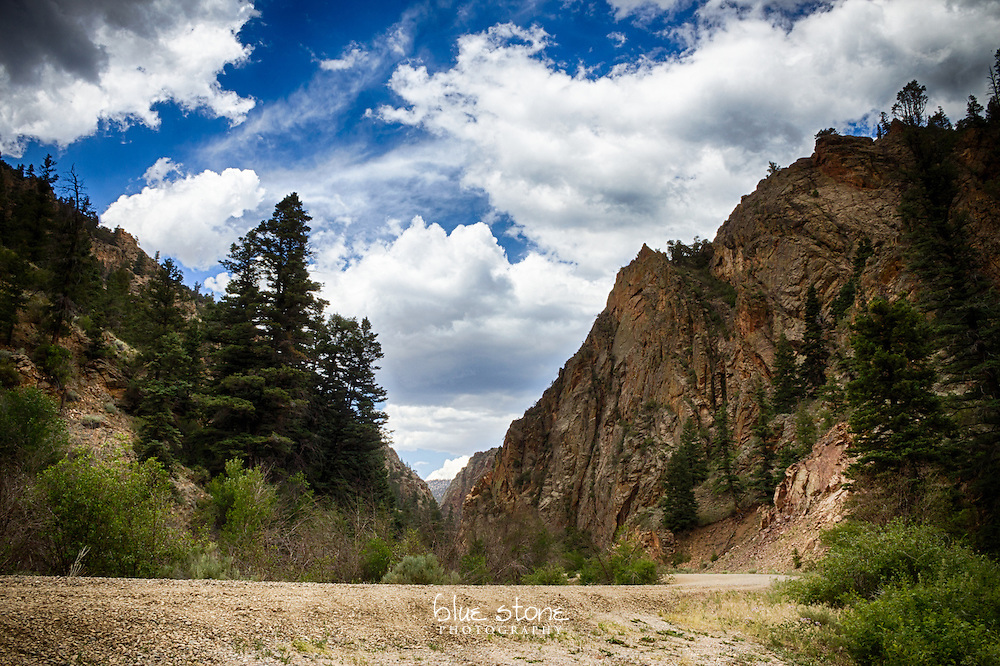 A rugged mountain near a dirt road that stands as a sentinel to protect the forest from outside influences.<br /> <br /> Wall art is available in metal, canvas, float wrap and standout. Art prints are available in lustre, glossy, matte and metallic finishes.
