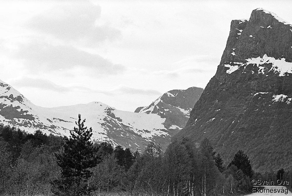 Veien smyger seg gjennom Norangsdalen, et av Norges trangeste dalfører.<br /> Foto: Svein Ove Ekornesvåg