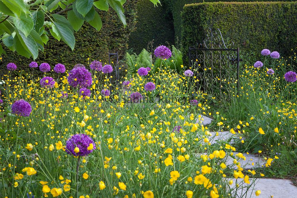 The Wild Garden, Kiftsgate Court Gardens