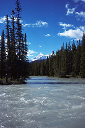 View Of Mt Edith Cavell
