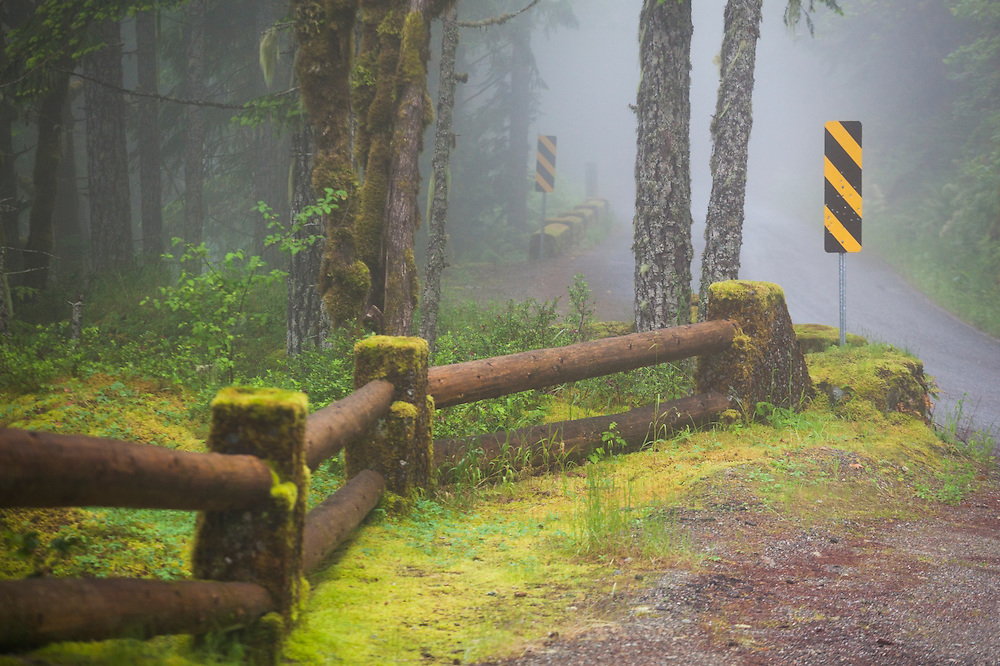 Street signs and retainer walls covered in moss along Cascade River Road, Mount Baker-Snoqualmie National Forest, Washington.