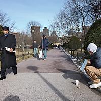 """Verenigde Staten,Boston, Massachusetts , 22 februari 2010..Boston is de hoofdstad en grootste stad van de Amerikaanse staat Massachusetts. Het wordt ook beschouwd als de officieuze hoofdstad van New England. In het jaar 2000 had Boston 589.141 inwoners. De hele agglomeratie Groot-Boston, die zich tot in New Hampshire, Rhode Island en Connecticut uitstrekt, telt 6.057.826 inwoners (volkstelling 2000). De stad ligt in Suffolk County. De inwoners worden Bostonians genoemd..Boston is een van de oudste en rijkste steden van de Verenigde Staten, met een economie gebaseerd op financiële diensten, verzekeringen, onderwijs, hightechproducten en -research, en medische diensten en research (bijvoorbeeld door Bostons wereldvermaarde gespecialiseerde ziekenhuizen). Sinds 1993 is Thomas Menino burgemeester van Boston. Hij is een Democraat en de eerste burgemeester van Italiaanse afkomst in de geschiedenis van Boston..Op de foto wandelend door Boston Common (also known as """"the Common"""") i seen central public park in Boston, Massachusetts..Foto:Jean-Pierre Jans"""