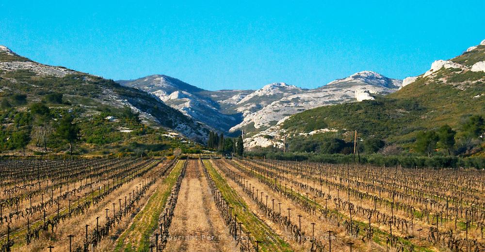 A vineyard and the mountain Les Alpilles at Les Baux de Provence, Bouches du Rhone, France