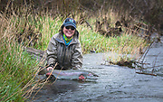 The way to end a great steelhead trip is to slide one last girl back into the river. Happy Days.