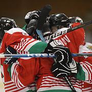 Bulgaria celebrate a goal from Maksim Eftimov during the Turkey V Bukgaria match during the 2012 IIHF Ice Hockey World Championships Division 3 held at Dunedin Ice Stadium. Dunedin, Otago, New Zealand. 21st January 2012. Photo Tim Clayton