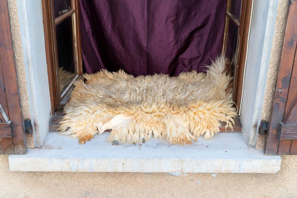 sheep skin in window sill