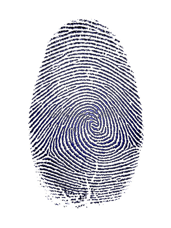 Detailed finger print blue ink