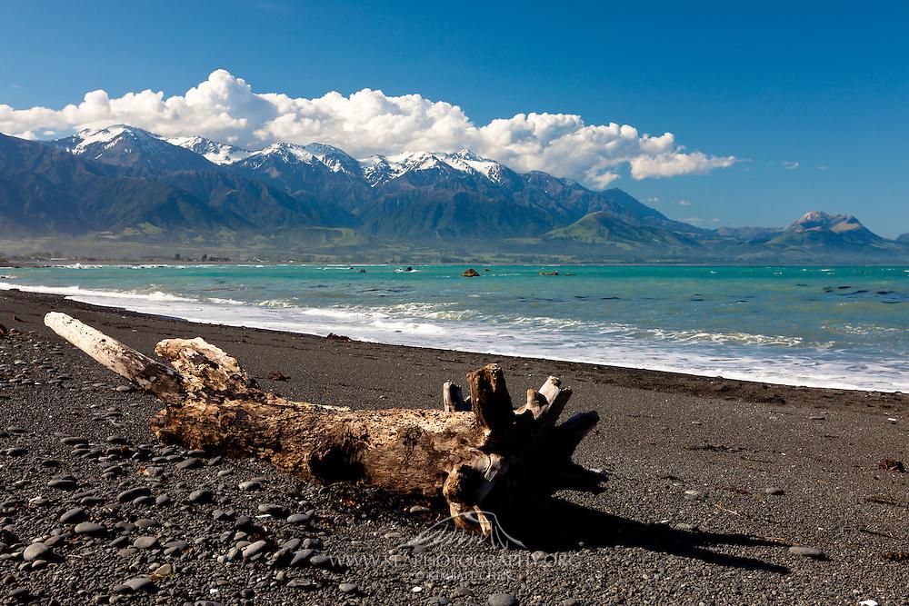 Kaikoura, driftwood and Seaward Range, New Zealand
