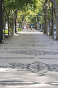 Street view. Avenida Liberdade. Tree lined walk. Lisbon, Portugal