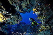 diver on Santa Rosa Reef, <br /> Cozumel, Mexico, ( Caribbean Sea )<br /> MR 117