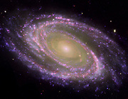 Spiral Galaxy  M81, tilted at an oblique angle on to terrestrial line of sight, viewed in Multiwavelength light. Credit NASA. Science Astronomy Stellar Space