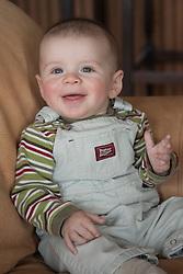 United States, Washington, Bellevue, baby boy