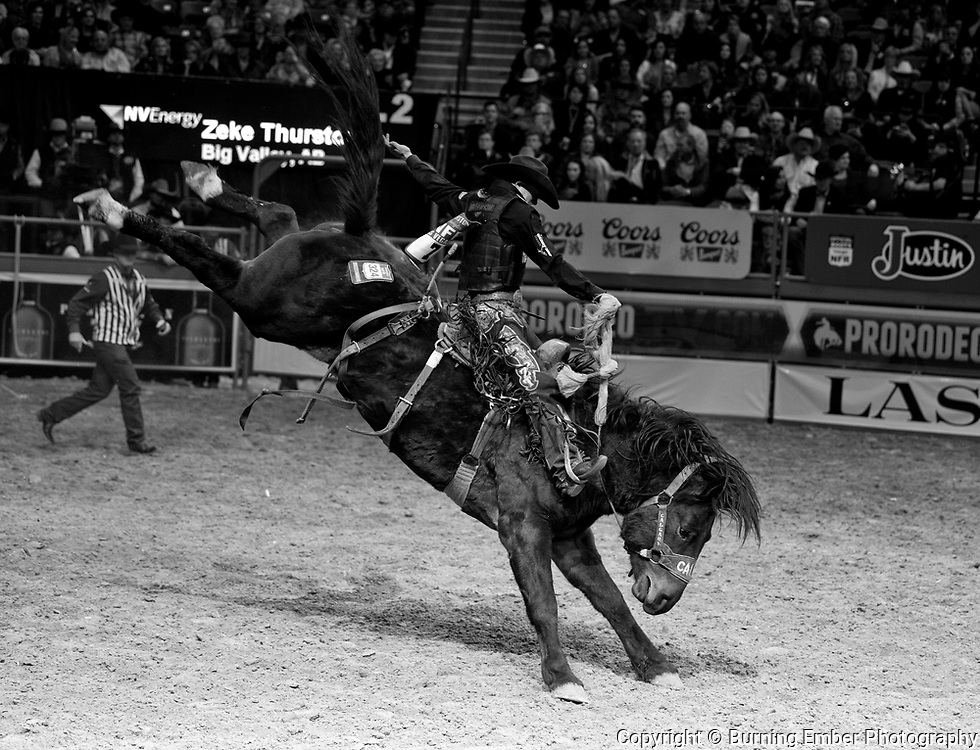 Zeke Thurston on Timely Delivery of Calgary Stampede in the Saddle Bronc event during the Wrangler National Finals Rodeo 1st round December 6th, 2017.  Photo by Josh Homer/Burning Ember Photography.  Photo credit must be given on all uses.