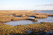 Saltmarsh in tidal creeks of the River Ore looking towards the military structures on Orford Ness, Suffolk, England