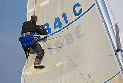 Largs Regatta Week 2015, hosted by Largs Sailing Club and Fairlie Yacht Club<br /> <br /> 3841C, Ubiquity, Henry Reid<br /> <br /> <br /> Credit Marc Turner