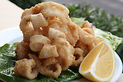 A plate of deep fried Calamari