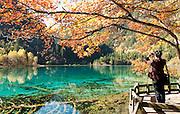 Five Flower Lake in Jiuzhaigou National Park, Sichuan Province, China