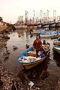 Fish Market, Old Town, Mazatlan, Sinaloa, Mexico