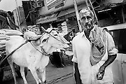 India, Old Delhi, 2014