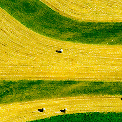Aerial view of Bales of Hay Lancaster Farms, Amish