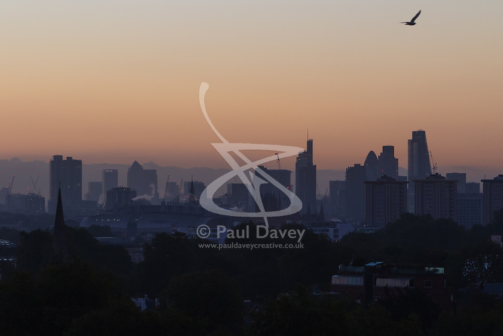 Primrose Hill, London, October 4th 2016. A bird soars in the early morning sky as dawn breaks across London, throwing the city's skyline into silhouette.