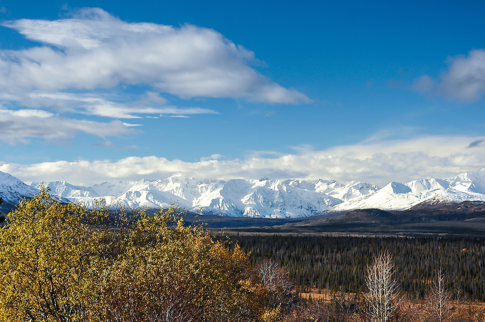 Chilkat Mountains and fall colours from the Haines Highway