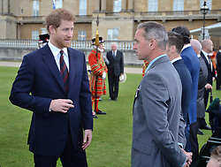 Prince Harry speaks to Martin Wilson during the Not Forgotten Association Annual Garden Party at Buckingham Palace, London.